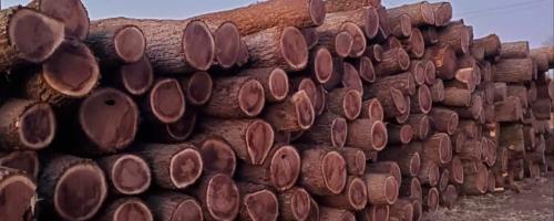 Broadleaf Lumber Walnut
